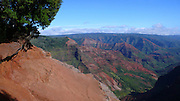 Hiking, Waimea Canyon, Kokee State Park, Kauai, Hawaii