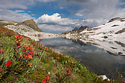 Middle Nydiver Lake in the Ansel Adams wilderness with wildflowers. High Sierra backpacking trip to Garnet Lake and Nydiver Lake in the Ansel Adams Wilderness out of Devil's Postpile national monument 2017.