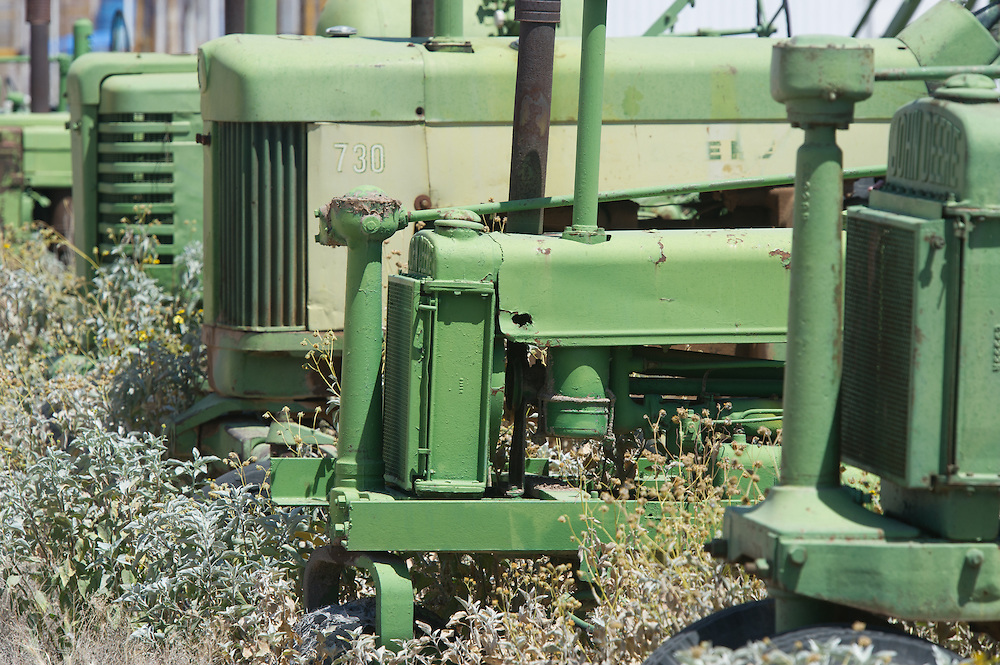 Row of antique Green Tractors in weeds
