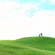 Grassy Hill Volunteer Park Seattle, Washington