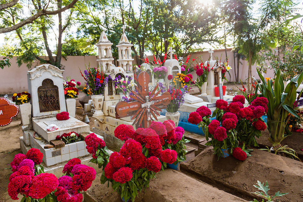 Graves decorated with elaborate floral pedal tapestries in honor of the deceased at the San Antonino Castillo cemetery during the Day of the Dead Festival known as Día de Muertos on November 3, 2013 in San Antonino Castillo Velasco, Oaxaca, Mexico.