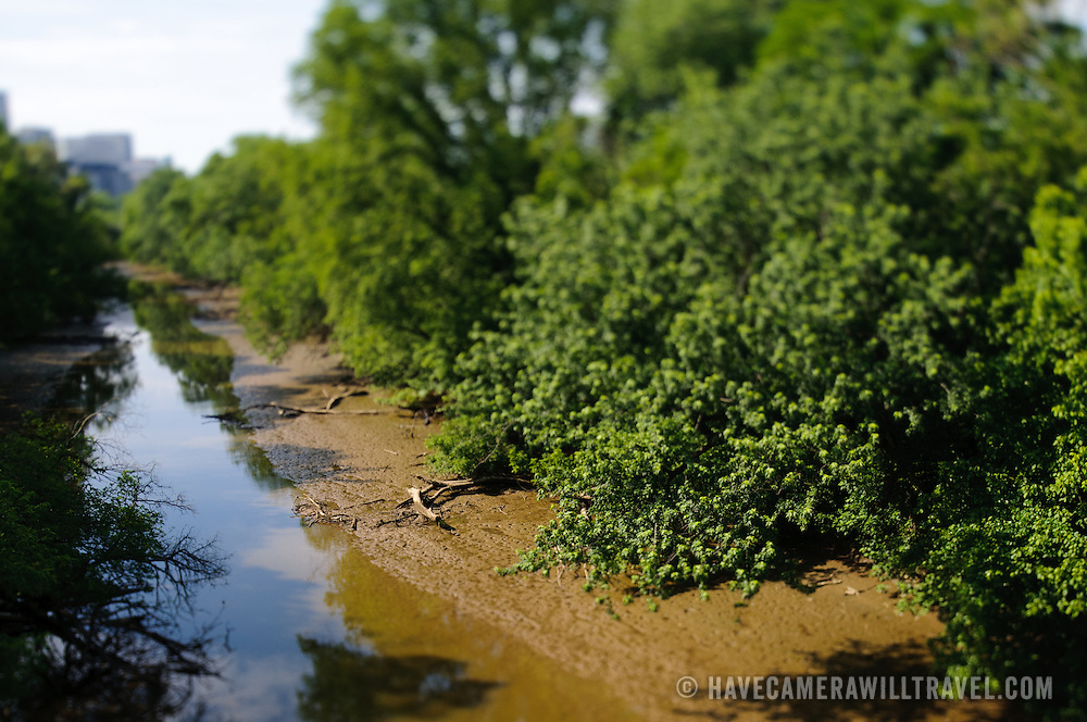Muddy creek bed in tilt-shift. NB: This is using tilt-shift photographic technique and has a very narrow field of focus.