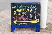 Lizard Point whippet racing sign