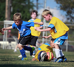 12 October 2013. Carrolton Boosters Soccer. New Orleans, Louisiana. <br /> U8 Turbo Dogs v Heaven's Pets<br /> Photo; Charlie Varley
