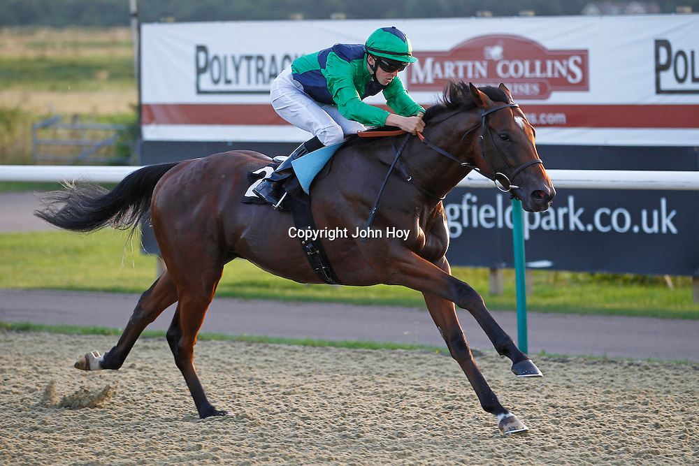 Elysian Prince and David Probert winning the 6.20 race