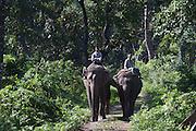 Chitwan Park in southern Nepal