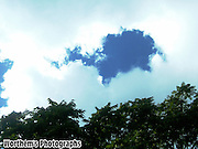 What does this patch of blue in a near cloud covered sky look like to you?