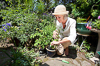 Senior woman crouching while gardening in backyard