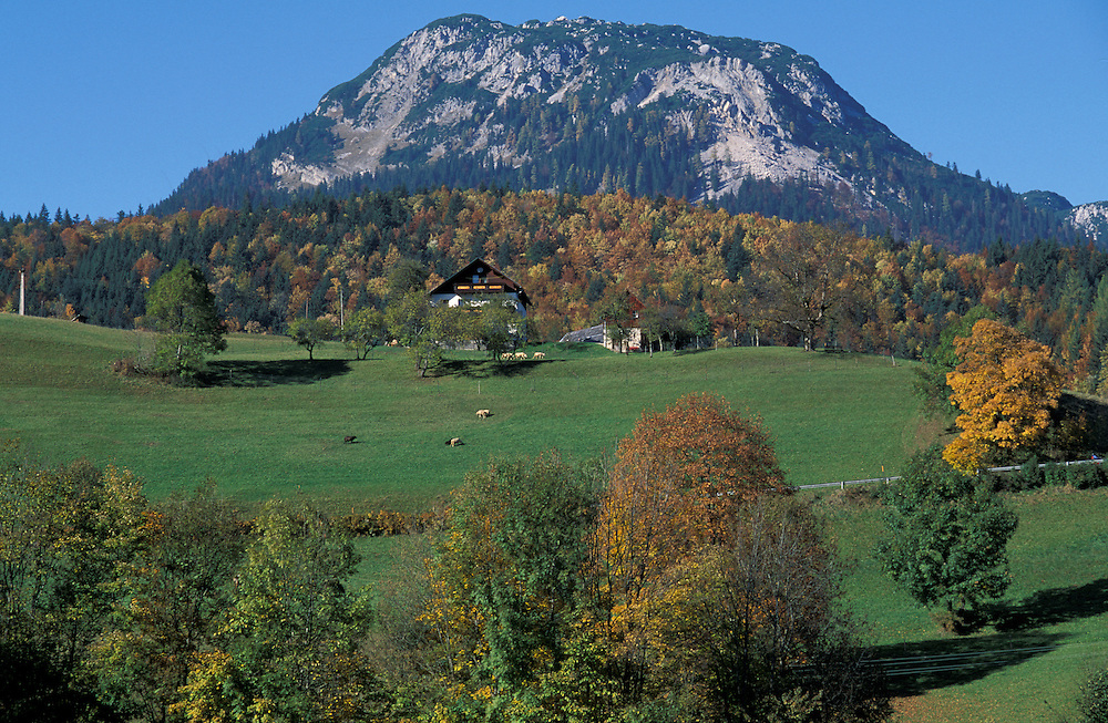 Farmhouse on  Poetschenhoehe,Steiermark, Austria