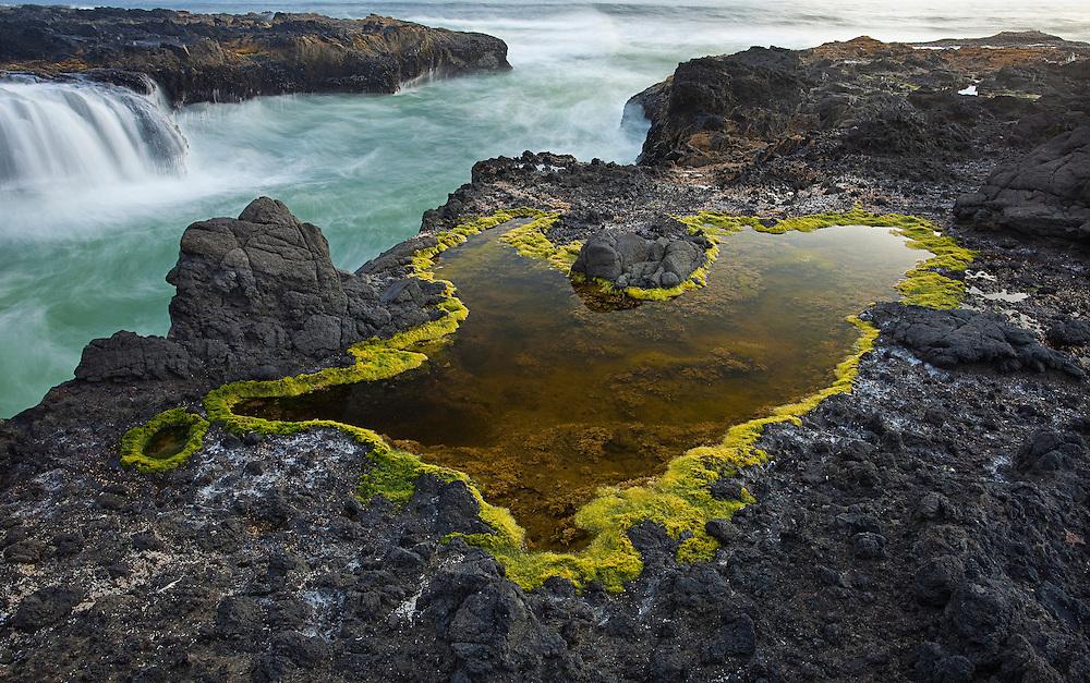 Cape Perpetua, Oregon Coast at dusk