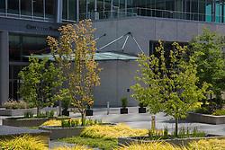 North America, United States, Washington, Bellevue, City Center Plaza