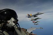 F/A-18C & E & F