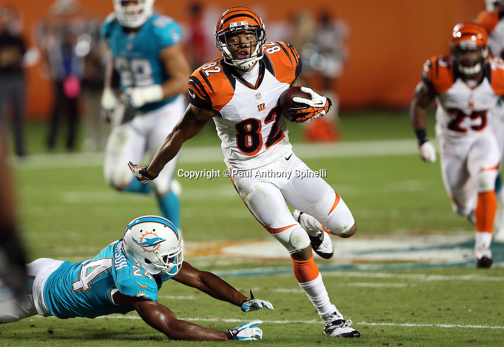 Cincinnati Bengals wide receiver Marvin Jones (82) catches a pass and runs past Miami Dolphins cornerback Dimitri Patterson (24) on a 50 yard touchdown nullified by an offensive holding penalty during the NFL week 9 football game against the Miami Dolphins on Thursday, Oct. 31, 2013 in Miami Gardens, Fla.. The Dolphins won the game 22-20 in overtime. ©Paul Anthony Spinelli