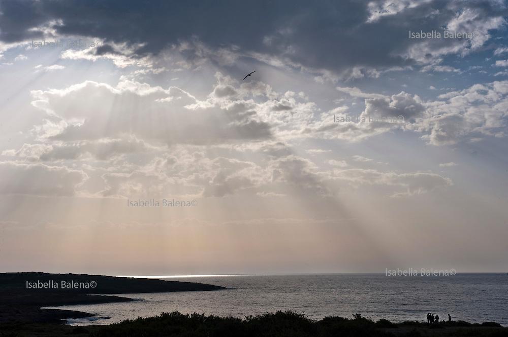 Lampedusa march 2011. Sbarchi e soccorso di migranti. landing and aid of migrants.