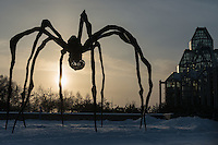 Giant bronze spider (Maman, by Louise Bourgeois) at the entrance to the National Gallery of Canada, 380 Sussex Dr., Ottawa