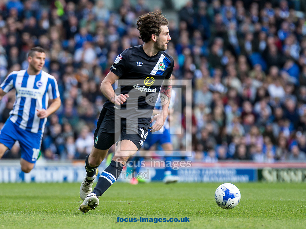 Charlie Mulgrew of Blackburn Rovers during the Sky Bet Championship match at the American Express Community Stadium, Brighton and Hove<br /> Picture by Liam McAvoy/Focus Images Ltd 07413 543156<br /> 01/04/2017