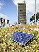 Solar field at the Haifa university, Israel