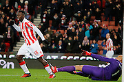 Stoke City striker Mame Biram Diouf (18) celebrates Stoke City defender Ryan Shawcross's (17) goal to make the score 1-0 to Stoke City during the Premier League match between Stoke City and Watford at the Britannia Stadium, Stoke-on-Trent, England on 3 January 2017. Photo by Richard Holmes.