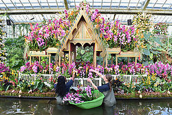 © Licensed to London News Pictures. 08/02/2018. LONDON, UK.  Kew staff put the finishing touches to the displays in Kew Garden's first Thai-inspired Orchids Festival, which celebration of Thailand's vibrant colours, culture, and magnificent plant life.   The festival runs from Saturday 10 February to Sunday 11 March 2018 and is hosted in partnership with the Royal Thai Embassy, London and Thai Airways.  Photo credit: Stephen Chung/LNP
