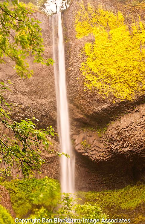 Latourell Falls at Full Flow in Oregon