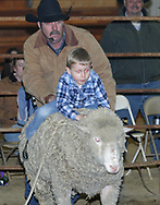 Scout Heitkamp, from Lebanon takes a ride on a sheep before the rodeo at Fox Hollow Stables in Waynesville, Saturday, March 3rd.  Scout took first place in the sheep riding contest.