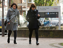 ©  London News Pictures. 25/11/2013. London, UK. Italian Sisters Elisabetta 'Lisa' (left) and Francesca (right) Grillo, who are the former personal assistants to Charles Saatchi and Nigella  Lawson, arriving at Isleworth Crown Court in London. The pair, who face fraud charges, are accused of misappropriating funds while working for Saatchi and Lawson. Photo credit : Ben Cawthra/LNP