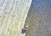 Aerial view of farms throughout the nation.