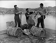 at Carna.  Boat Bulding with the Cloherty family..14/05/1959<br />