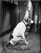 25/01/1957<br />