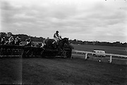 "10/05/1965<br /> 05/10/1965<br /> 10 May 1965<br /> Mr. T. McCairn's ""Peter's Town"" clears the last hurdle to win the Castella Maiden Hurdle at the Leopardstown Races on May 10, 1965."