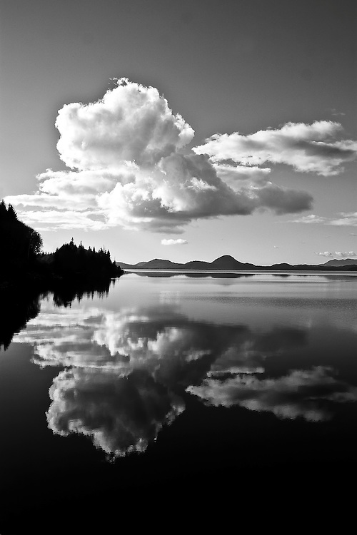 White cumulus clouds are reflected in the still water of Lake Kennedey near Tofino, Vancouver Island, BC Canada.<br />