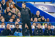 Derby County Manager Frank Lampard during the EFL Cup 4th round match between Chelsea and Derby County at Stamford Bridge, London, England on 31 October 2018.