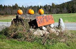 Roadside stand selling pumpkins, Errol area, New Hampshire.