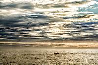 Barcos navegando ao largo da Praia da Armação ao amanhecer. Florianópolis, Santa Catarina, Brasil. / Boats navigating off the coast of Armacao Beach at sunrise. Florianopolis, Santa Catarina, Brazil.