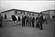 30/06/1965<br /> 06/30/1965<br /> 30 June 1965<br /> Japanese Trade Delegation visit Leinster A.I. Station, Clondalkin, Dublin. Image shows (l-r): Mr. Edward O'Mahon, (Department of Agriculture); Mr. Richard Richards, Veterinary Director, Leinster A.I. Cattle Breeding Station; Mr. M. Ishikawa (General Manager Kamaganaken Daiichi Dairy, Japan);  Mr. Y. Katsurashima, (Chief of Dairy Farming Section of Morinaga Milk Industry Co. Ltd.); Mr. Charles Vaughan, (Secretary, Dublin District Milk Board); Mr. M. Araki (Toshoku Ltd., London);  and Mr. Roderick Murphy, Trade Advisor, Coras Trachtala.
