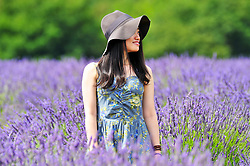 © Licensed to London News Pictures. 19/07/2018. Banstead, UK. A young woman walks through a field of Lavender plants at Mayfield Lavender Farm in Banstead. Photo credit: Grant Falvey/LNP