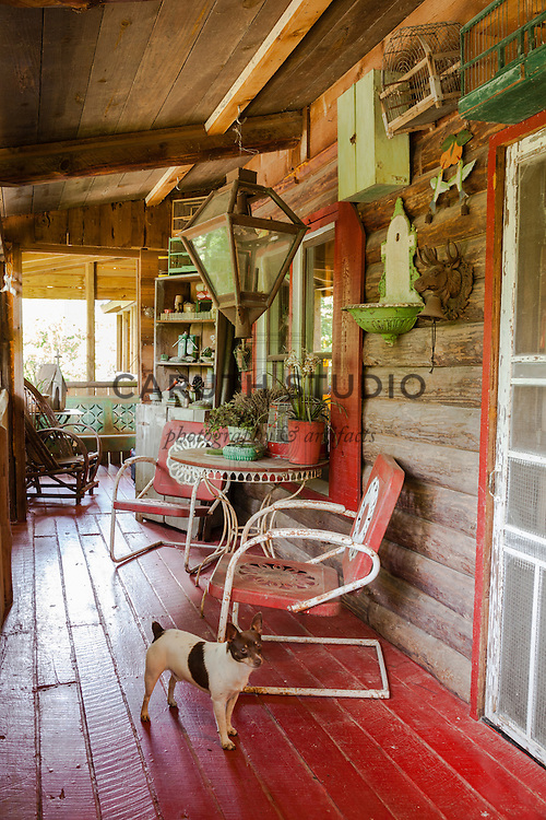Rustic Cabin: Porch overall with dog