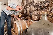 "Gerhard Fritz im Fasskeller, Odenwaldgasthaus ""Zum Kreiswald"", Rimbach, Hessen, Deutschland 