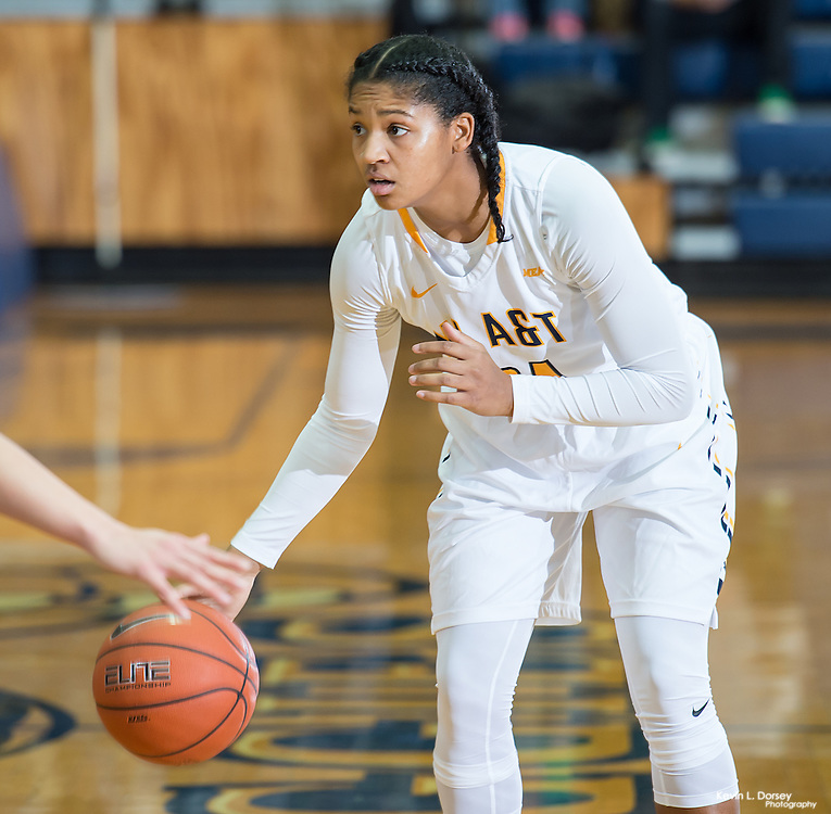 2016-17 A&T Women's Basketball vs UCLA