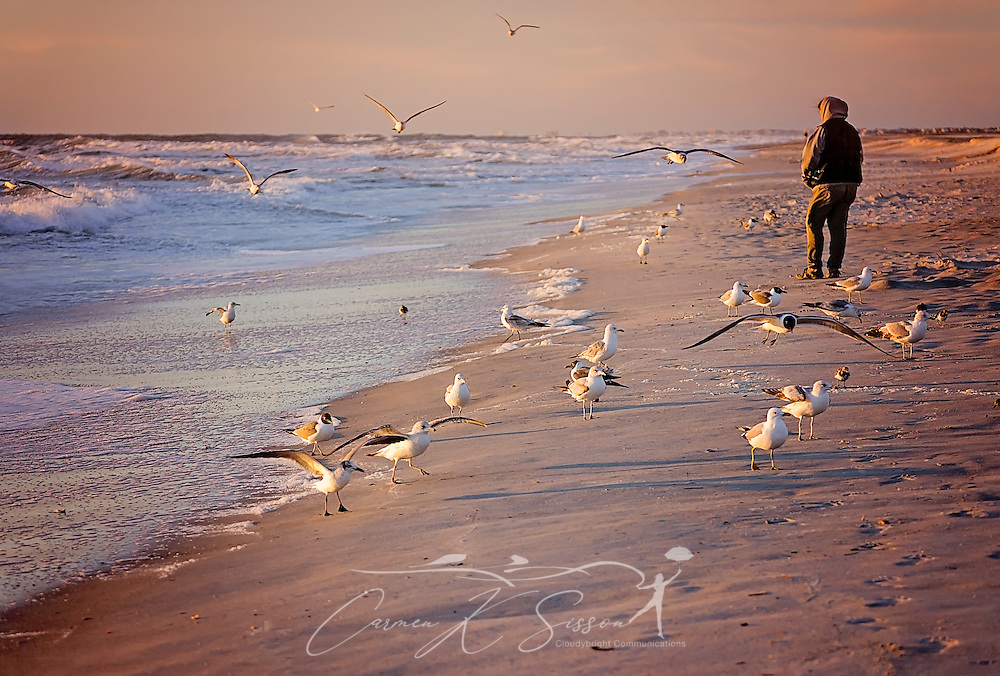A tourist walks along the beach at sunrise as seagulls gather for a handout, March 21, 2016, in St. Augustine, Florida. (Photo by Carmen K. Sisson/Cloudybright)
