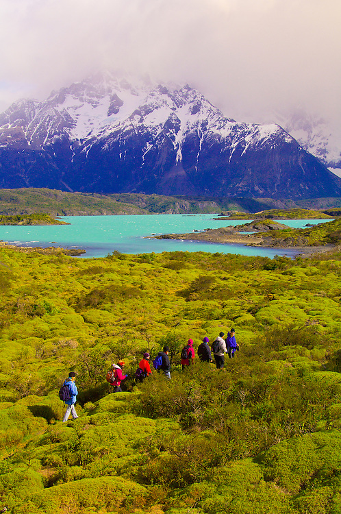 Hiking on the Nordenskjold Trail (Paine Grande in background), Lake Nordenskjold, Torres del Paine National Park, Patagonia, Chile