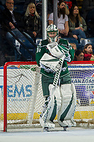 KELOWNA, BC - FEBRUARY 15:  Max Palaga #31 of the Everett Silvertips stands in net against the Kelowna Rockets at Prospera Place on February 15, 2019 in Kelowna, Canada. (Photo by Marissa Baecker/Getty Images)