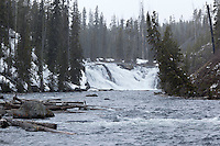 Lewis Falls in Snow Storm, Yellowstone National Park, Wyoming