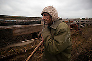 A collective farm manager takes a break from feeding his beef cattle at a collective farm near the village of Dublin on Oct. 24, 2009. The collective farms sits on the edge of the Chernobyl evacuated zone in the south.
