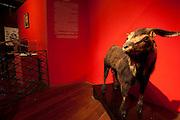 Fortaleza_CE, Brasil...Museu do Ceara, com detalhe para o Bode, figura historica de Fortaleza...Museum of Ceara, in this photo a Goat, historical figure of Fortaleza...Foto: BRUNO MAGALHAES / NITRO