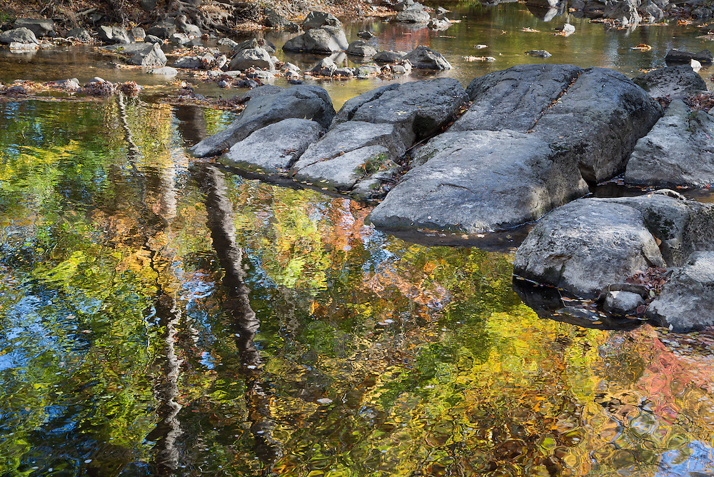 Fall trees reflecting in Christina River at Rittenhouse Park, Delaware