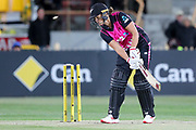 Suzie Bates bowled. Women's T20 international Cricket , Australia v New Zealand White Ferns. North Sydney Oval, Sydney, NSW, Australia. 29 September 2018. Copyright Image: David Neilson / www.photosport.nz