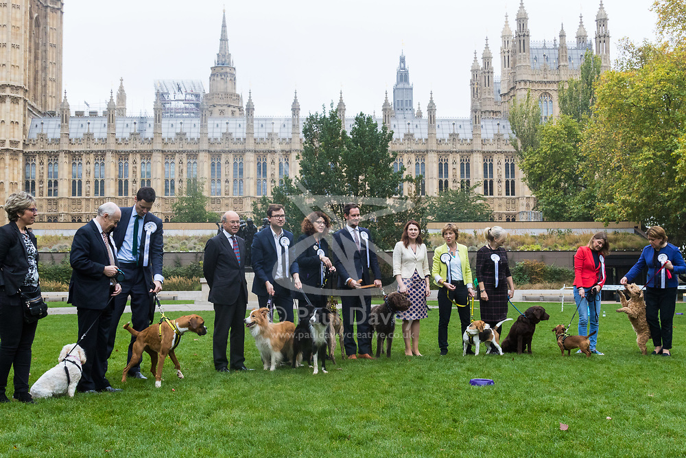 London, October 26 2017. MPs and their dogs line up as best they can at the annual Kennel Club and Dogs Trust Westminster Dog Of The Year competition that sees MPs and members of the House of Lords with their dogs as well as rescue dogs from the Dogs Trust. © Paul Davey