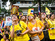 05 DECEMBER 2014 - BANGKOK, THAILAND: Thais look up to the hospital room of Bhumibol Adulyadej, the King of Thailand, while they hold up portraits of the King and wave Thai flags in the plaza at Siriraj Hospital to mark the King's 87th Birthday. Thousands of people jammed into the plaza hoping to catch a glimpse of the revered Monarch. He was scheduled to make a rare public appearance in the Grand Palace but cancelled at the last minute on the instructions of his doctors. He has been hospitalized in Siriraj Hospital, across the Chao Phraya River from the Palace, since early October.    PHOTO BY JACK KURTZ