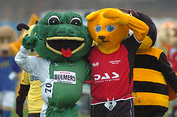 TOMMY THE TOAD, (THAMESMEAD FC), POSES WITH WACKY MACKY SAFFRON WALDEN FC), John Smiths Mascot Grand National, Huntingdon Racecourse Sunday 5th October 2008